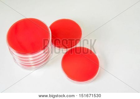 Blood Agar(ba); Selective Media For Bacteria Growth.