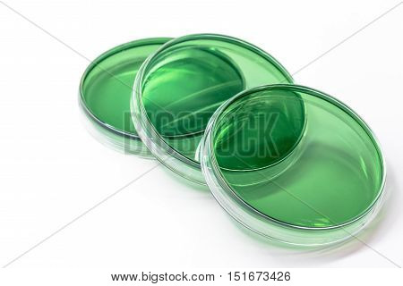 Tcbs Agar (thiosulfate Citrate Bile Salts Sucrose Agar); Selective Media For Bacteria Growth.