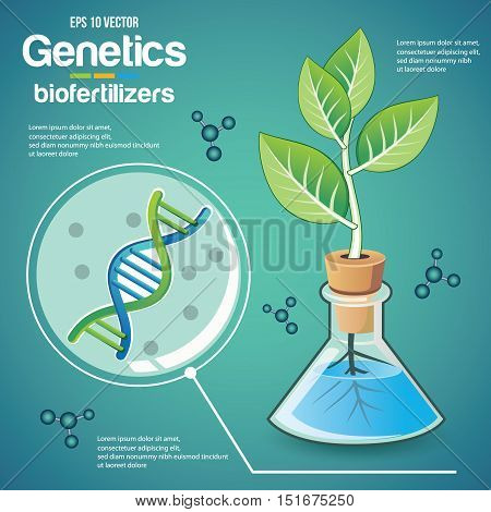 genetics(plant) poster template design gmo plant growing