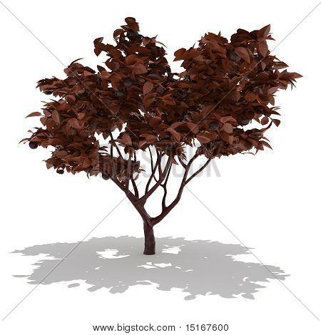 milk chocolate tree