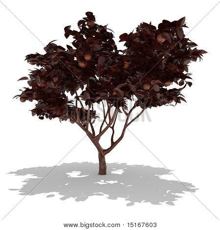dark chocolate tree