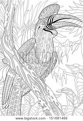 Stylized cartoon exotic and tropical rhinoceros hornbill bird (Buceros rhinoceros). Freehand sketch for adult anti stress coloring book page with doodle and zentangle elements.