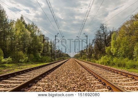 Parallel railway tracks and overhead lines are heading towards the cloudy sky on the horizon and through the forest