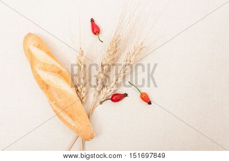 French Baguette, Wheat And Brier