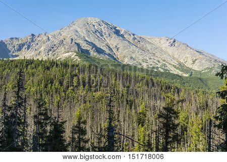 Peak - Slawkowski Szczyt (slavkovsky Stit).