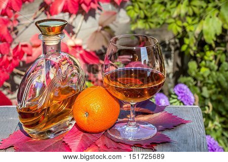 Bottle and a snifter of brandy with orange on the old table in autumn garden's