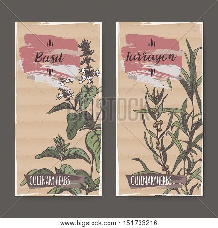Two color labels with basil and tarragon sketch. Culinary herbs collection. Great for cooking, medical, gardening design.