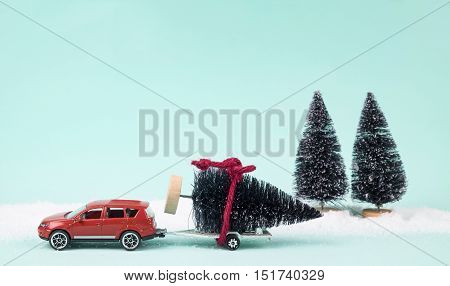 Red Car And Trailer Carrying A Christmas Tree.