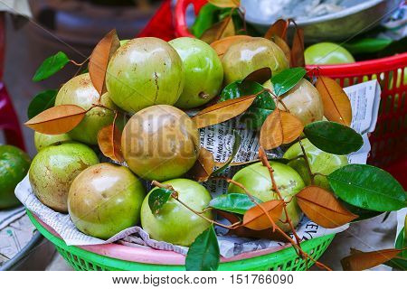 star Apple in the Vietnamese market. fruit