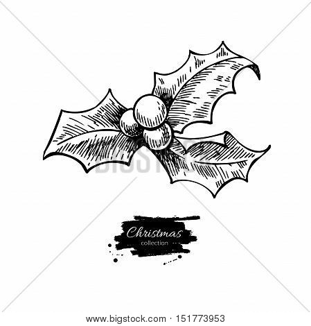 Christmas mistletoe, holly berry with leaves. Hand drawn vector illustration. Botanical Xmas decor element. Great for logo, icon, label, holiday decoration.