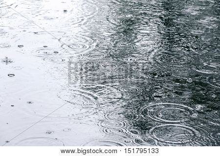 Raindrops And Sky Reflection On Water Surface Of Puddle