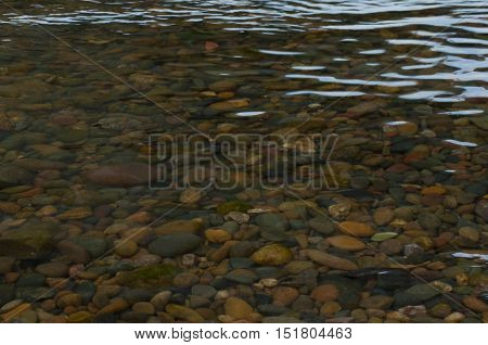 multi-colored pebble under a layer of river water with patches of light