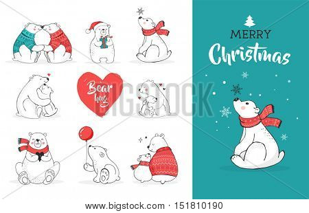 Hand drawn polar bear, cute bear set, mother and baby bears, couple of bears. Merry Christmas greetings with bears
