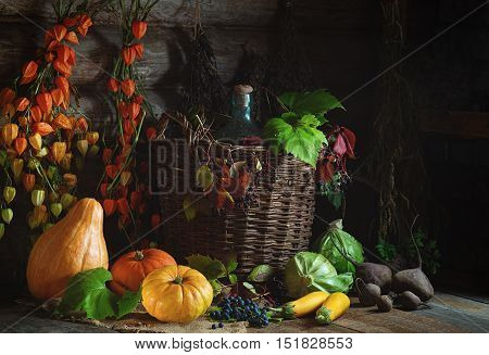Autumn still life with vegetables graps and Chinese Lantern Plants Autumn on wooden table in rustic style
