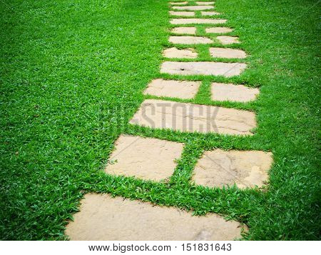 Stone block walk way in garden with green grass background