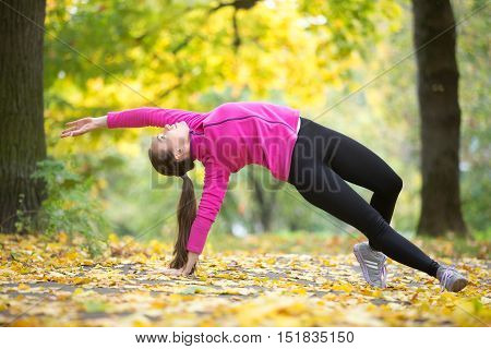 Sporty beautiful young woman practicing yoga, standing in Camatkarasana, Wild Thing or Flip-the-Dog posture, doing everyday morning routine, working out outdoors on autumn day. Full length poster