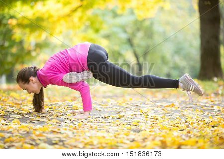 Sporty beautiful young woman practicing yoga, doing arm stand exercise, Eka Pada Galavasana, Flying Pigeon Flying Crow Pose, working out outdoor in autumn park wearing bright sportswear. Full length