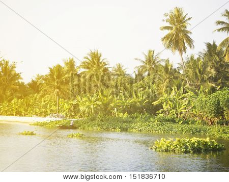Riverside natural scene in the countryside of Thailand Samutsongkram province.
