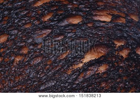 Burn Toast Bread Texture  with Close Up