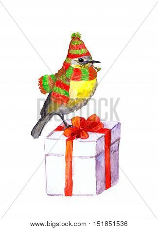 Cute bird in winter hat and scarf on white christmas gift box. Watercolour