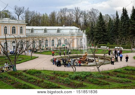 Peterhof, Russia - May 13, 2006: Famous Samson and the Lion fountain. Peterhof Palace included in the UNESCO World Heritage List. Saint Petersburg