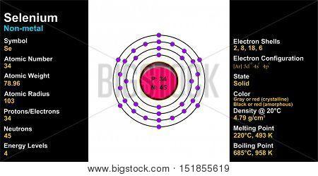 Vector - Selenium Atom