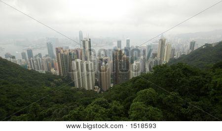 Hong Kong City View