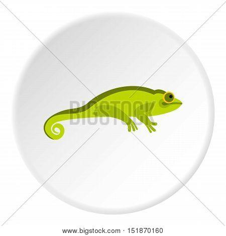 Green chameleon icon. Flat illustration of green chameleon vector icon for web