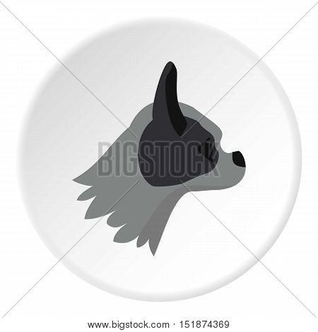 Pug dog icon. Flat illustration of pug dog vector icon for web