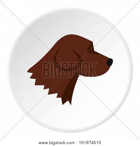 Beagle dog icon. Flat illustration of beagle dog vector icon for web