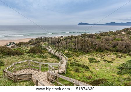 Boardwalk To The Beach At The Neck Lookout, Tasmania