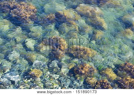 Green Stone In Clear Sea Water