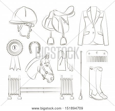 Set of different quipment for horses. Equestrian objects. Isolated elements.