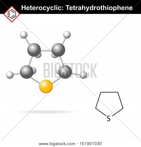 Tetrahydrothiophene chemical structure and 3d model 2d and 3d vector illustration chemical icon isolated on white background eps 8