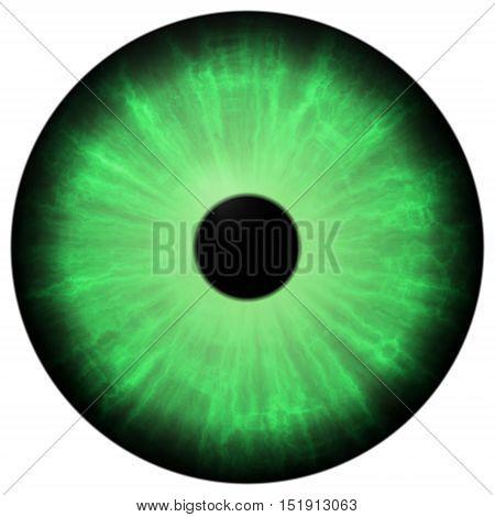 Isolated Big Green Eye. Illustration Of Green Blue Stripped Eye Iris, Reflection
