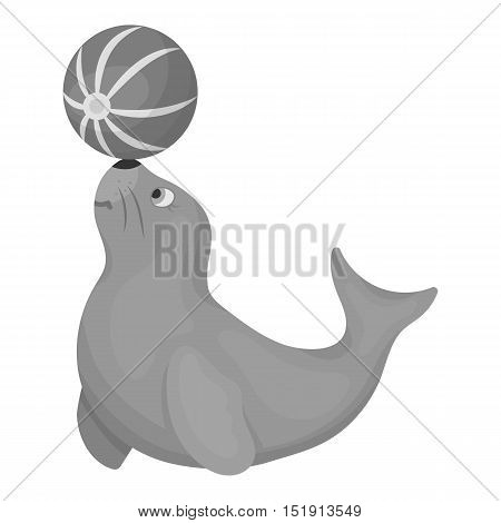 Trained fur seal icon in monochrome style isolated on white background. Circus symbol vector illustration.