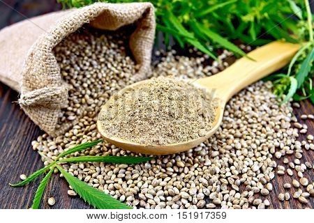 Hemp flour in a wooden spoon, the grain in the bag and on the table,  leaves and stalks of cannabis on the background of planks