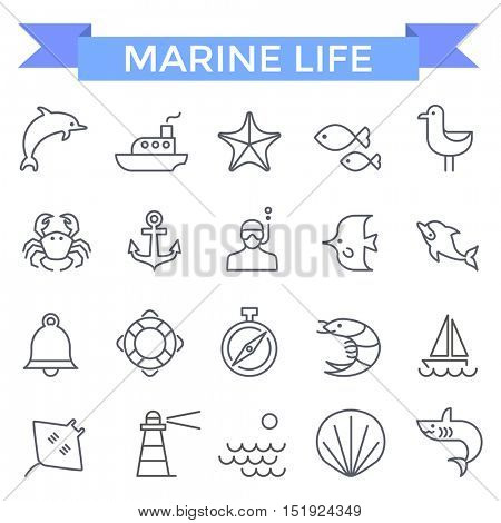 Marine icons, thin line flat design