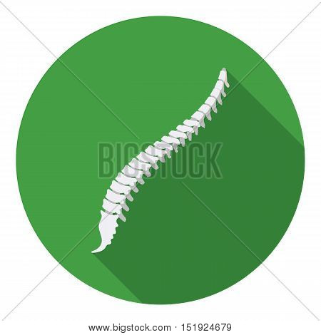Spine icon in flat style isolated on white background. Organs symbol vector illustration.