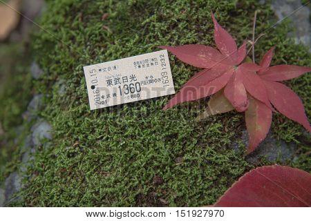 NIKKO, JAPAN - OCTOBER 15 ,2016 : train ticket tobu-nikko ,go to nikko by train. City of UNESCO.