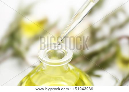 Glass dropper and bottle of coniferous essential oil, close up view