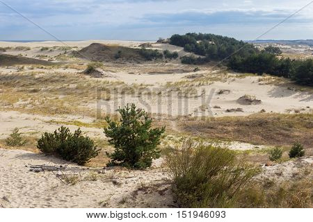 Sand dunes of the russian part Curonian Spit in autumn. It is a 98 km long curved sand-dune spit that separates the Curonian Lagoon from the Baltic Sea coast. It is a UNESCO World Heritage Site.