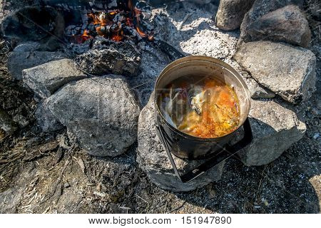 A pot of freshly made fish soup on an open fire in the woods on a summer day