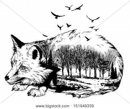 Vector Double Exposure, Silhouette Of Fox And Forest