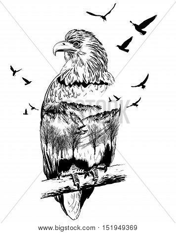 Vector Double Exposure, Eagle, Wildlife Concept