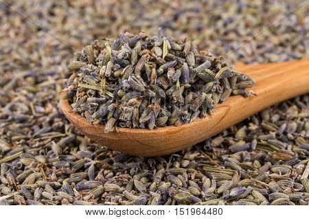 Dried Lavender Organic Tea