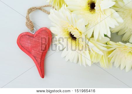 Beige gerbera flowers for valentines day on gray wooden table