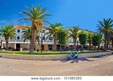 Novalja on Pag island palm waterfront view Dalmatia Croatia