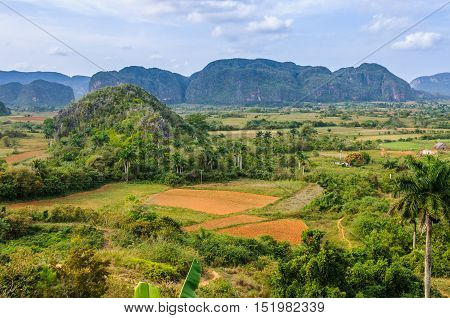 Panoramic View In Vinales Valley, Cuba