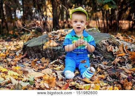 tiny boy sits in yellow autumn leaves